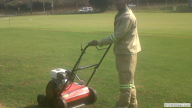 cricket patch maintenance with sacrifer